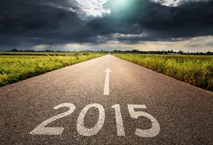 The road ahead in 2015